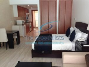 Best price furnished studio Al Alka, Greens