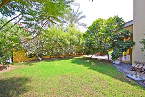 Massive plot | Palmera 1 | Immaculate